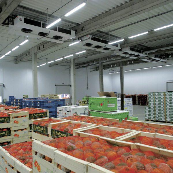 Склады для хранения овощей и фруктов