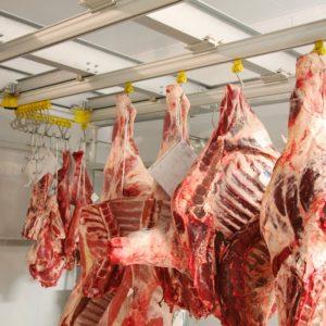 М'ясо та рибопереробні підприємства