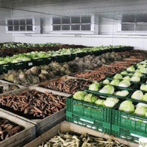 Склады для хранения пищевой продукции