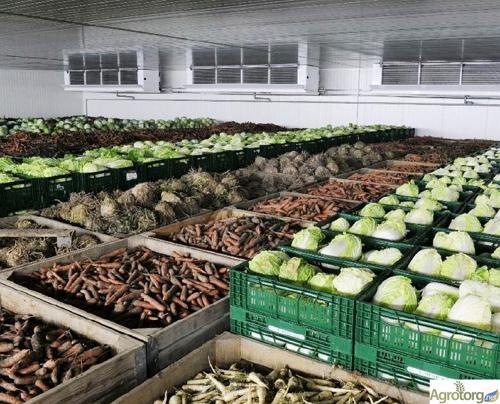 Склади для зберігання харчової продукції