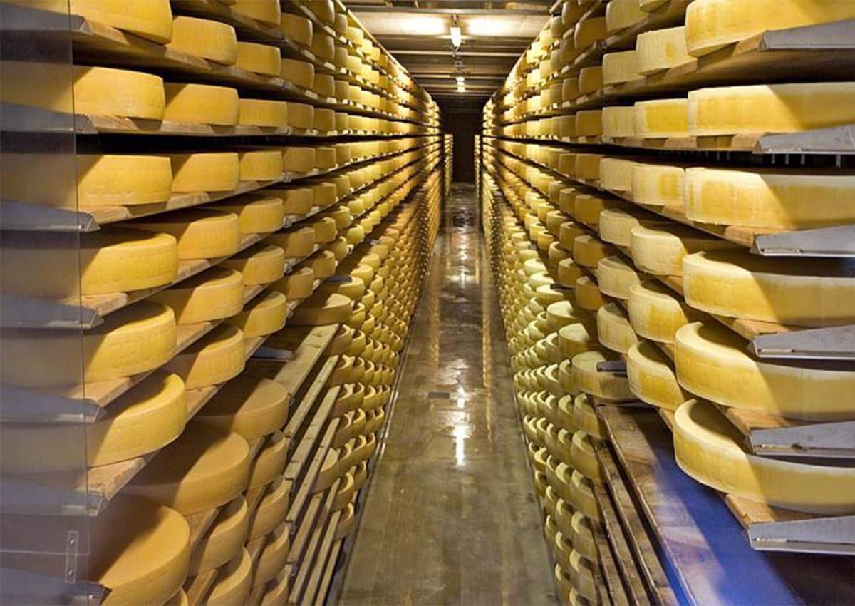холодильна камера для сиру