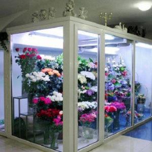 Склады и камеры для хранения цветов