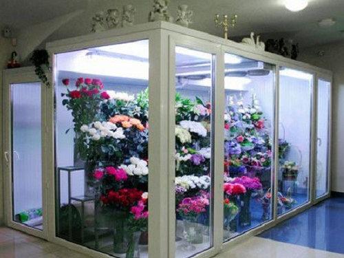 Холодильна камера для квітів