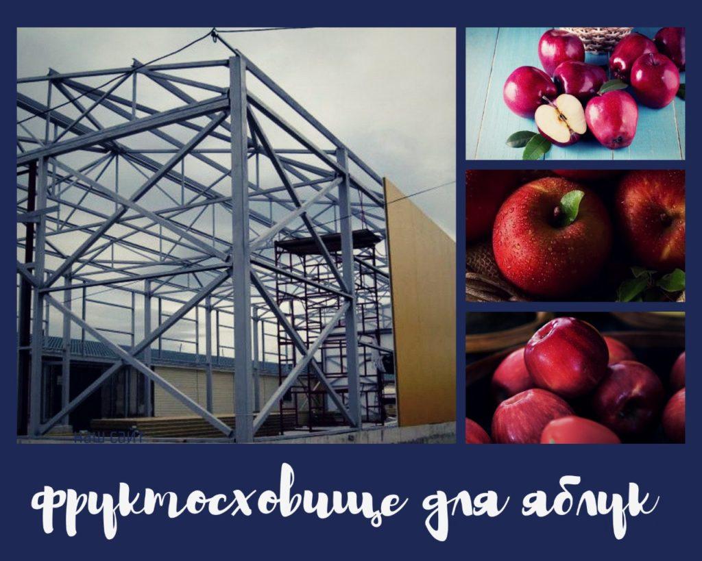 Фруктосховище під яблука