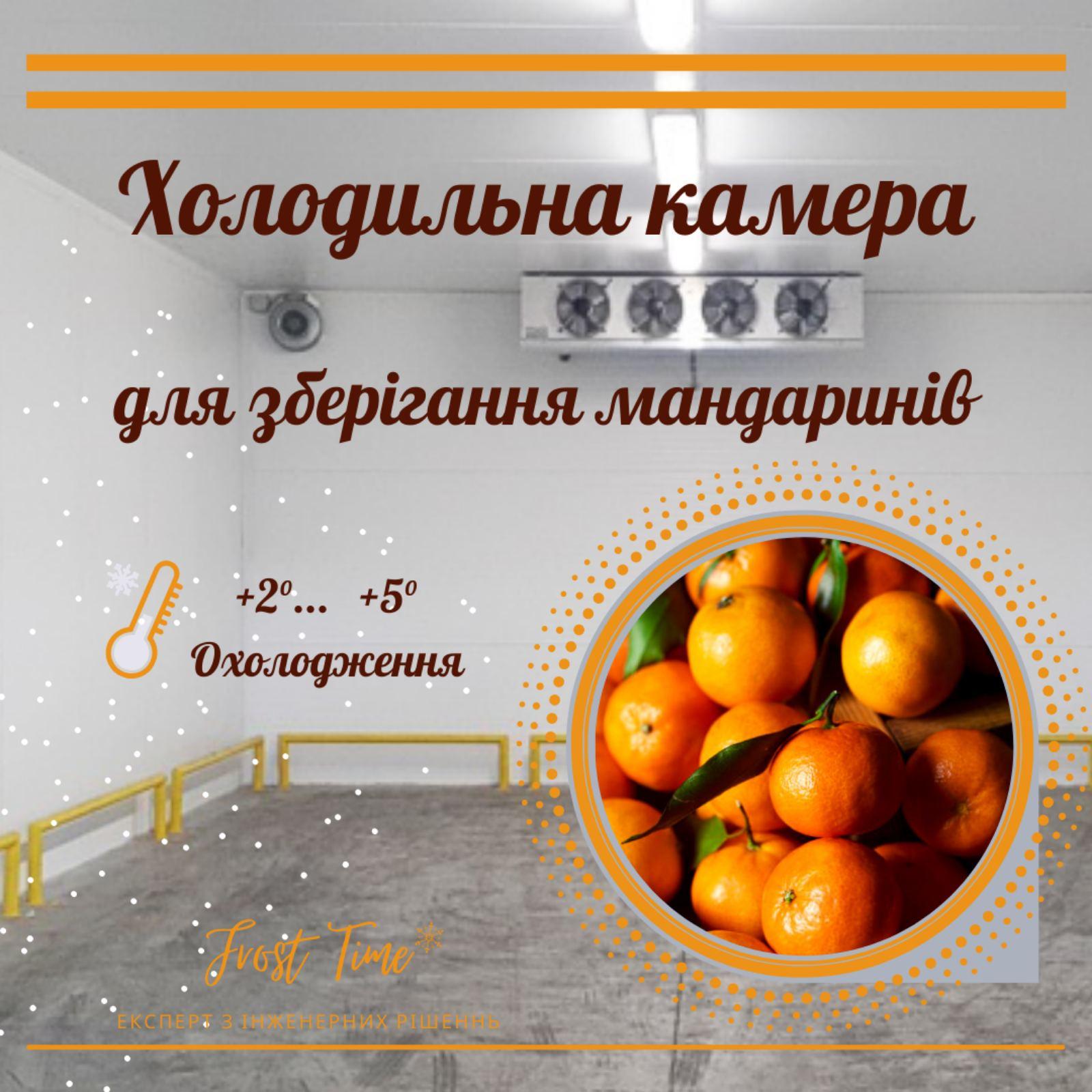 холодильна камера для мандаринів